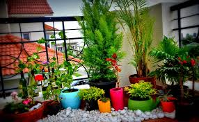Small Picture Best Balcony Garden Ideas Best Balcony Design Ideas Latest