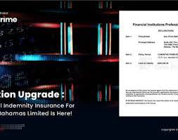 Failure to provide such services can often lead to costly legal actions and whether the failure to perform is justified or not, the costs to defend such an action can very quickly. Doo Prime Bahamas Limited Secured The Professional Indemnity Pi Insurance The Leaders Online