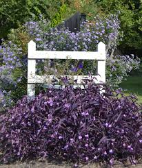 Small Picture Garden Designers Roundtable Ideas For Adding Texture To Your