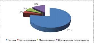Реферат Приватизация в России необходимость способы этапы итоги Рисунок 3 Структура собственности 2003 году