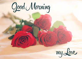 cute good morning my love messages for couple