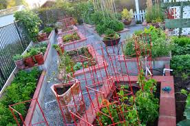 Kitchen Gardening Entertaining From An Ethnic Indian Kitchen Garden Tour 2 The