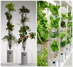 ... Contemporary Home Interior Decoration Using Various Indoor Green Wall :  Beautiful Picture Of Accessories For Home ...
