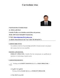 Visa Resume