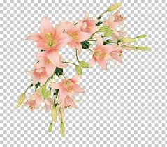 Flower Paper Clips Border Flowers Borders And Frames Paper Flower Pink