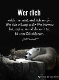 Trauer Katze Sprüche Schön Süwag Verys Beautycom