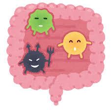 腸内細菌のイラスト   かわいいフリー素材集 いらすとや