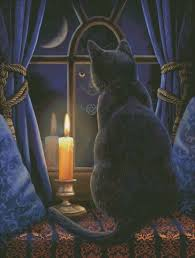 Black Cat And Candle In The Widow Midnight Vigil Magic