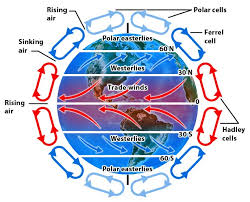 Wind Patterns Interesting Atmospheric Processes And Conditions The Water Cycle Weather And