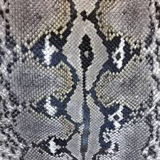 Python Pattern Awesome Snake Skin Python Pattern Textile Texture Reptile Fabric Natural