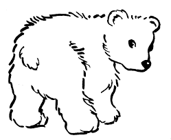 Small Picture Polar bear cub coloring pages ColoringStar