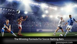 The Winning Formula For Soccer Betting Bets - Gonzoporr