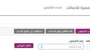 الاستعلام عن فاتورة التليفون الارضي اكتوبر 2020 عبر موقع billing.te.eg  المصرية للاتصالات ومعرفة اخر موعد للدفع - إقرأ نيوز