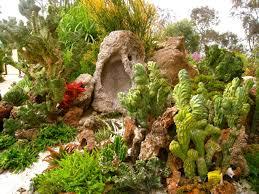 spongebob meets dwell in this awesome underwater succulent garden at san go botanic garden