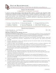 Executive Summary Example Resume Resume Templates