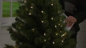 bethlehem lighting christmas trees. wonderful bethlehem onair presentation on bethlehem lighting christmas trees
