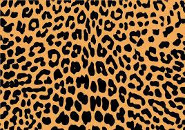 Leopard Pattern New Free Leopard Print Vector 48 WeLoveSoLo