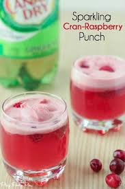 Cranberry raspberry holiday punch recipe, a great drink for holiday parties!  Just ginger ale, cranberry juice, and raspberry sherbet/sorbet!