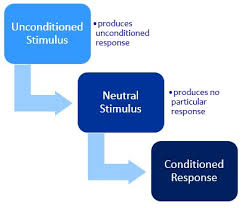 Classical Conditioning In The Classroom Classical Conditioning The Peak Performance Center