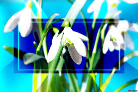 Spring Powerpoint Background Download Free Picture Flowers Spring Background Powerpoint