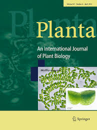 HAD hydrolase function unveiled by substrate screening: enzymatic  characterization of Arabidopsis thaliana subclass I phosphosug