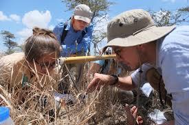 Ecologists In The Field Turkana Basin Institute