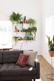 Houseplants for Beginners | My Breezy Room. See More. How to Create a  Killer Garden Wall in Your Apartment