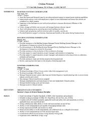 Systems Coordinator Resume Samples Velvet Jobs