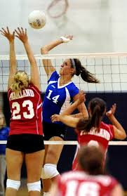 Nazareth Area High School's Tori Hamsher named Lehigh Valley Conference  girls volleyball most valuable player - lehighvalleylive.com