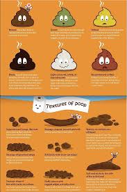 Stool Chart Images A Poop Chart Ofcoursethatsathing