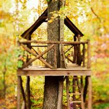 Build Easy Treehouse Plans DIY PDF Buliding Plans For A Wood Frame How To Build A Treehouse For Adults