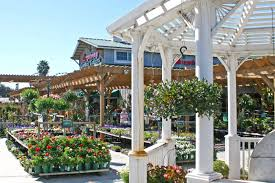 armstrong garden center locations. Simple Locations Armstrong Garden Center Morena Throughout Locations O