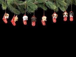 Details Zu Christbaumschmuck Hund Jack Russel Im Strumpf Weihnachtsschmuck Süßer Welpe