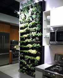Small Picture Best Of Indoor Herb Garden Ideas Vertical Garden Design Kitchen Wall