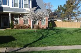 creative your lawn care service experts lawn doctor of virginia beach