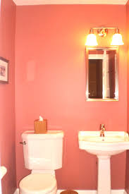 Perfect Paint Color For Boys Bathroom Sherwin Williams Krypton What Color To Paint Bathroom