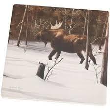 Pin by Moosteria.com on <b>Moose</b> Coaster Set