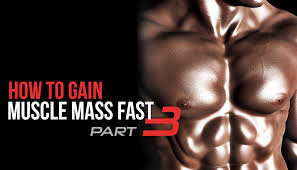 how to gain muscle m fast part 3