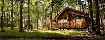 cottage in forest ile ilgili görsel sonucu