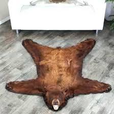 polar bear skin rug cost black rugs at world 5 foot 1 inch brown real comfortable bear hide rug