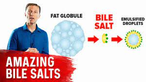 the 9 benefits of bile salts you