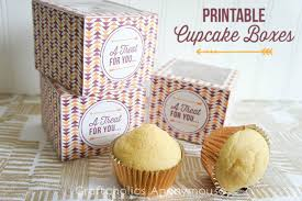 Decorative Boxes For Baked Goods Cupcake Boxes 60 DIY Ideas to Package Your Cupcakes 12