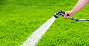 7 best garden hoses to in 2019