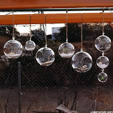 hanging glass plant terrarium orbs with 2 ikea