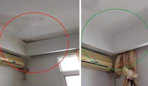 how to remove mold in the house woohome