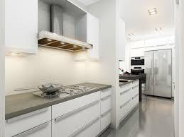 Kitchen Light Grey Kitchen Grey Kitchen Cabinets Pictures Grey And