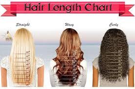 Hair Length Chart Women Hair Length Chart A Little Motivation And Understanding