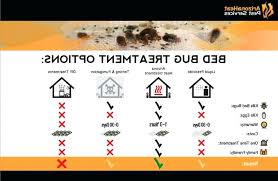diy bed bug removal photo 2 of 7 bed bug treatment 2 bed bug treatment option
