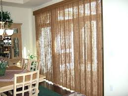blinds shades ing patio door blinds amazing patio plants
