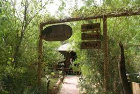 tree house jaipur. The Tree House Resort: Way To The Nature Shop Tree House Jaipur